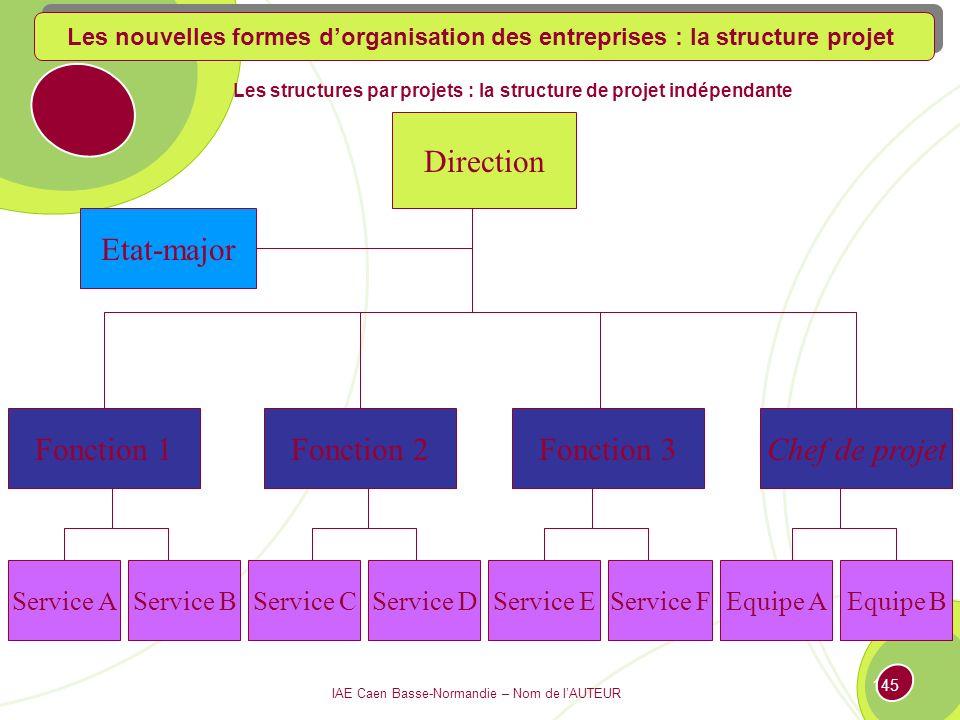 Les structures par projets : la structure de projet indépendante