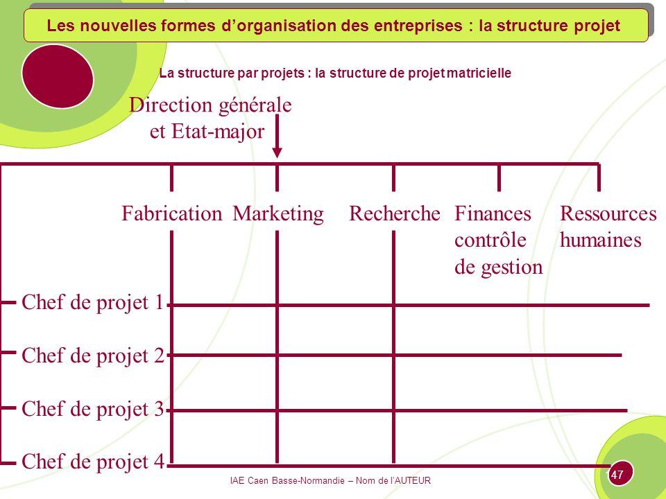 La structure par projets : la structure de projet matricielle