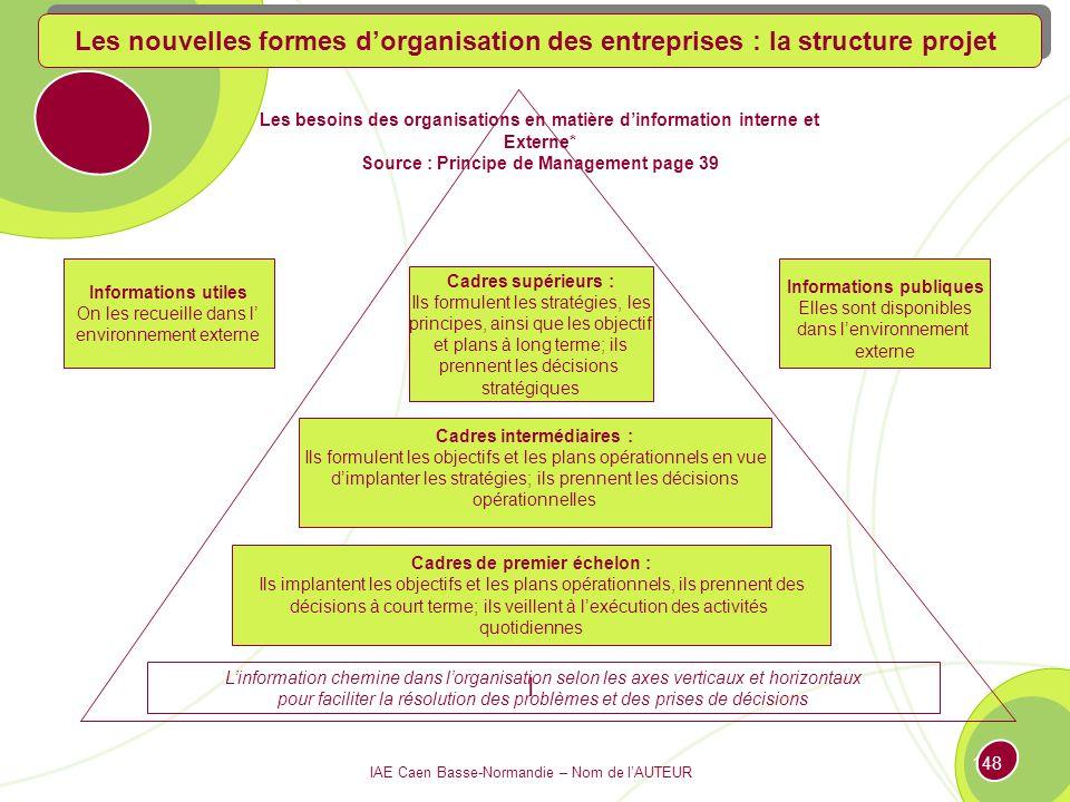 Les nouvelles formes d'organisation des entreprises : la structure projet