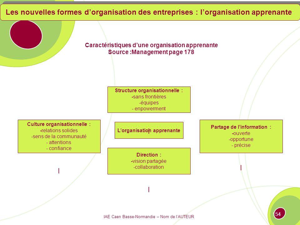 Les nouvelles formes d'organisation des entreprises : l'organisation apprenante