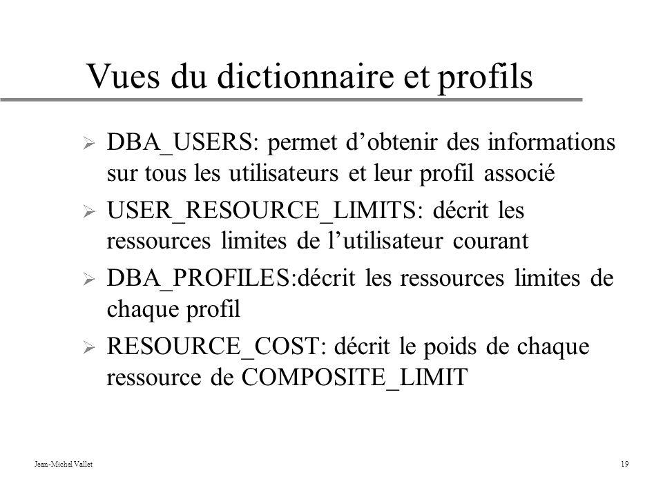 Vues du dictionnaire et profils