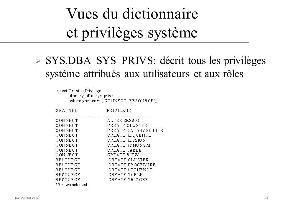 Vues du dictionnaire et privilèges système