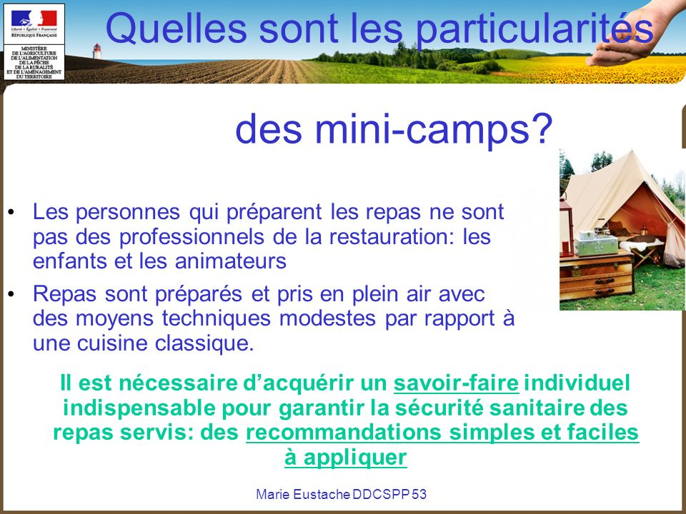 Quelles sont les particularités des mini-camps