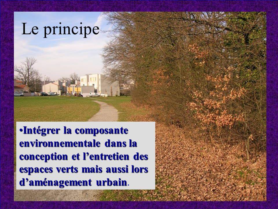 Le principe Intégrer la composante environnementale dans la conception et l'entretien des espaces verts mais aussi lors d'aménagement urbain.