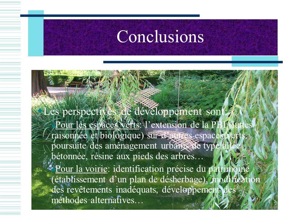 Conclusions Les perspectives de développement sont: