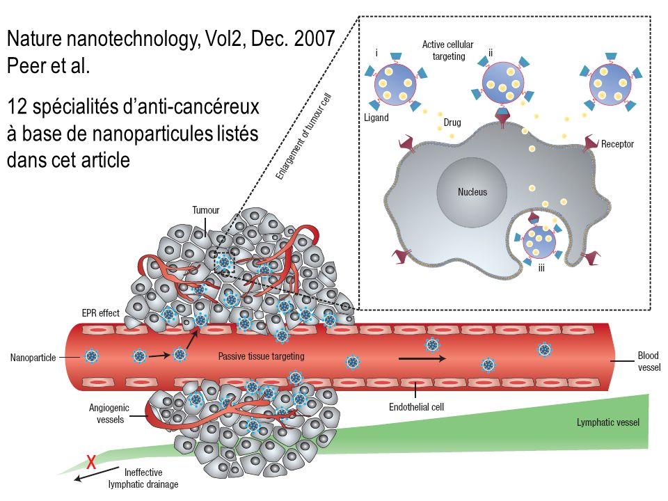 Nature nanotechnology, Vol2, Dec. 2007