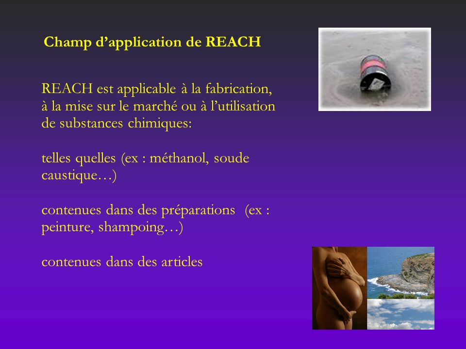 Champ d'application de REACH