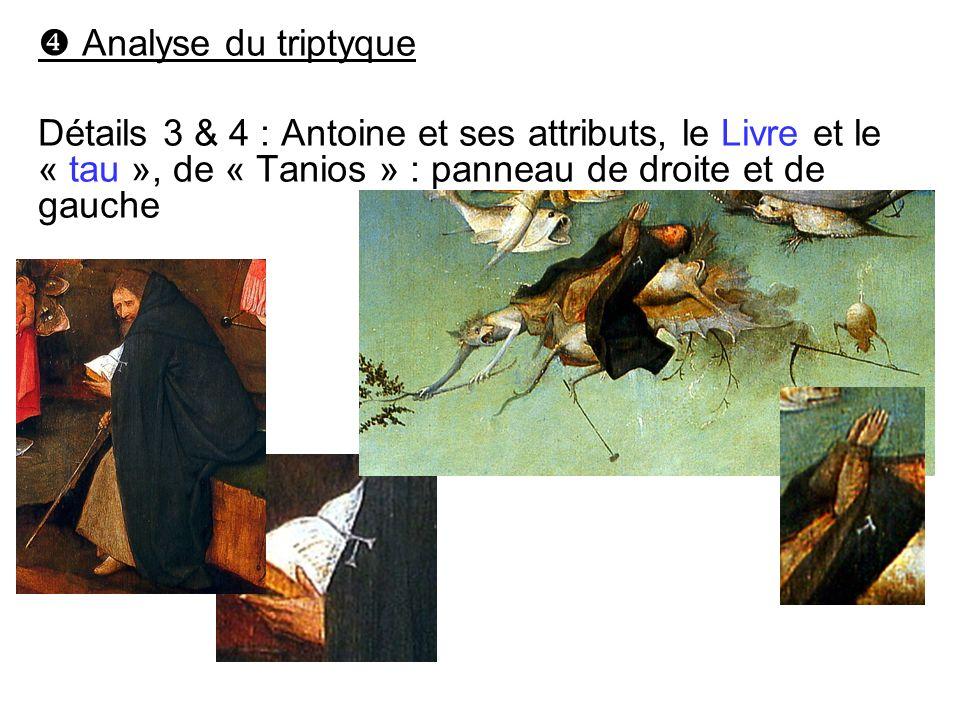  Analyse du triptyque Détails 3 & 4 : Antoine et ses attributs, le Livre et le « tau », de « Tanios » : panneau de droite et de gauche.