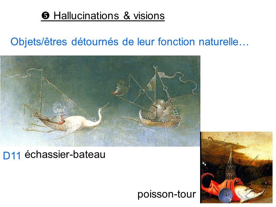  Hallucinations & visions