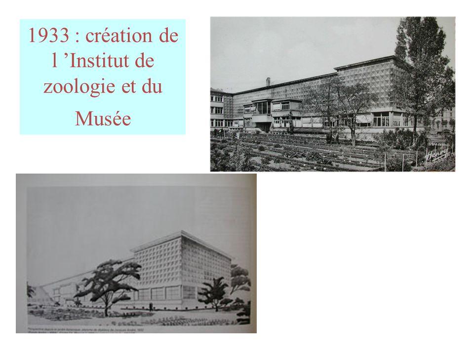 1933 : création de l 'Institut de zoologie et du Musée