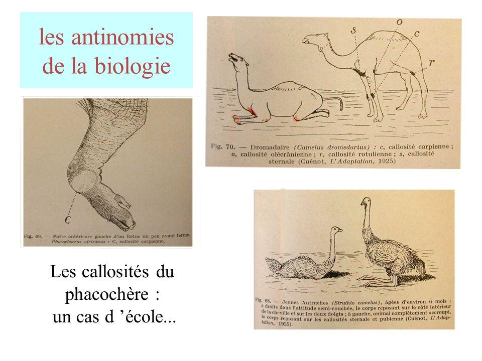 les antinomies de la biologie