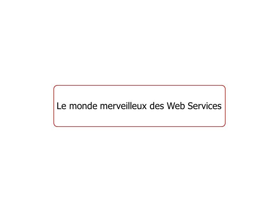 Le monde merveilleux des Web Services