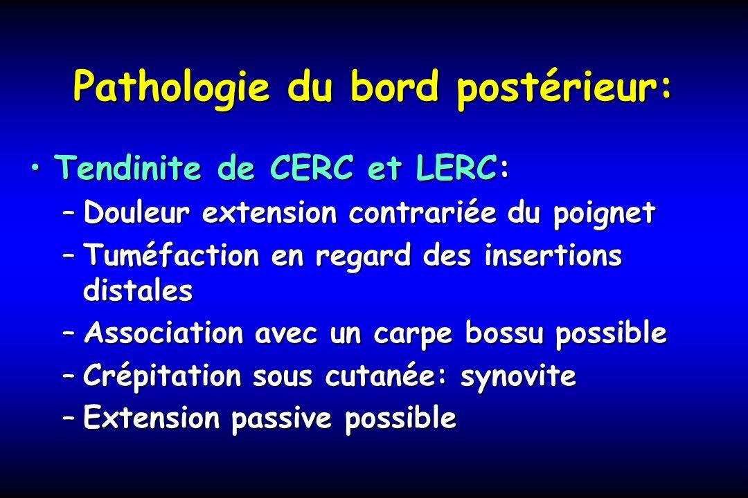 Pathologie du bord postérieur: