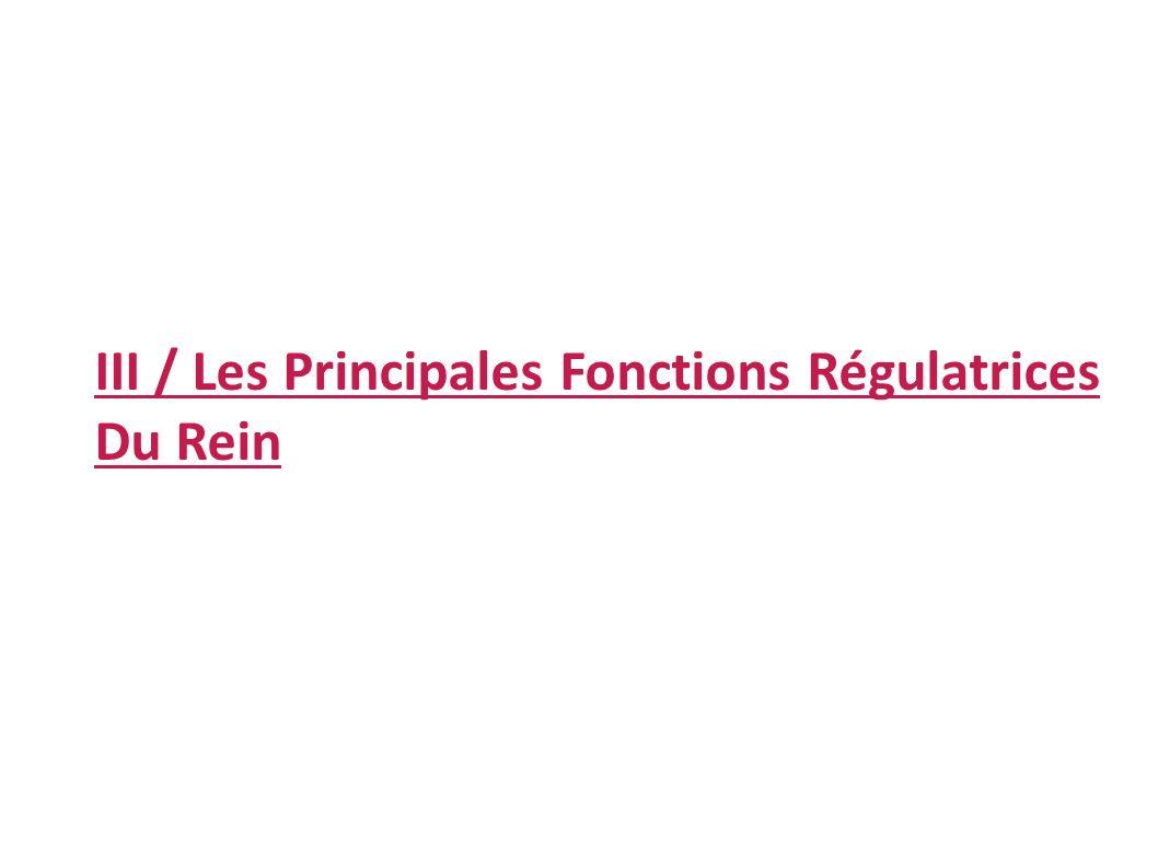 III / Les Principales Fonctions Régulatrices Du Rein