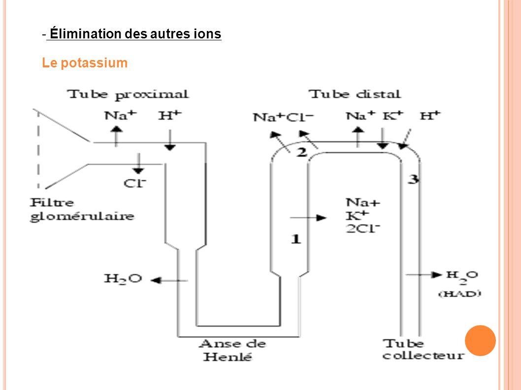 Élimination des autres ions