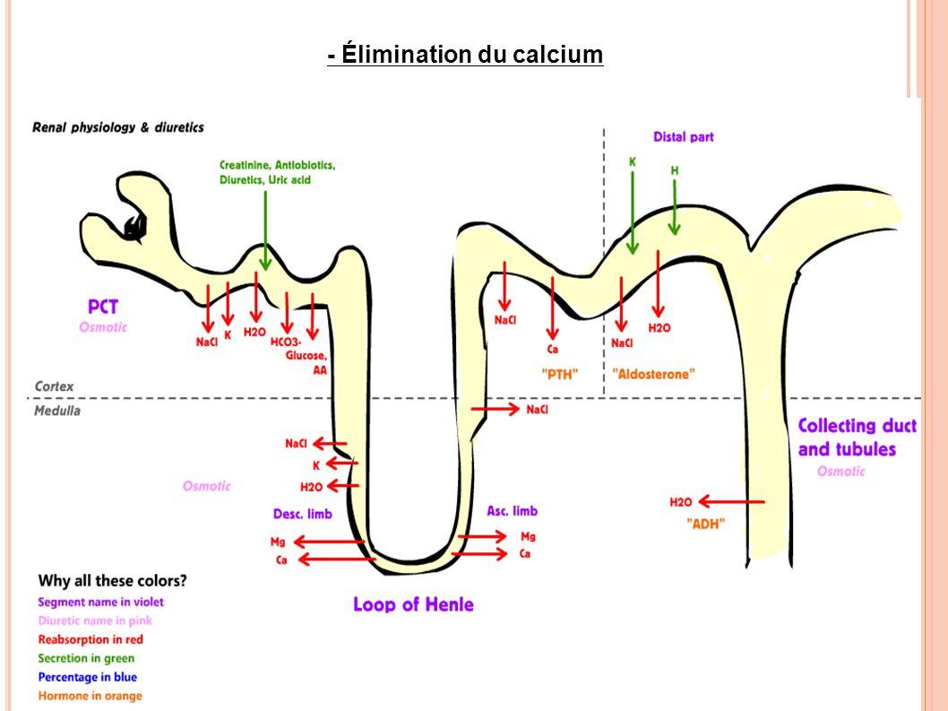 - Élimination du calcium