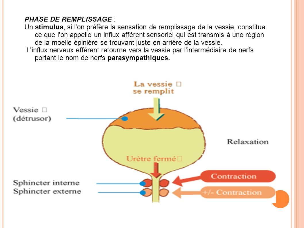 PHASE DE REMPLISSAGE :