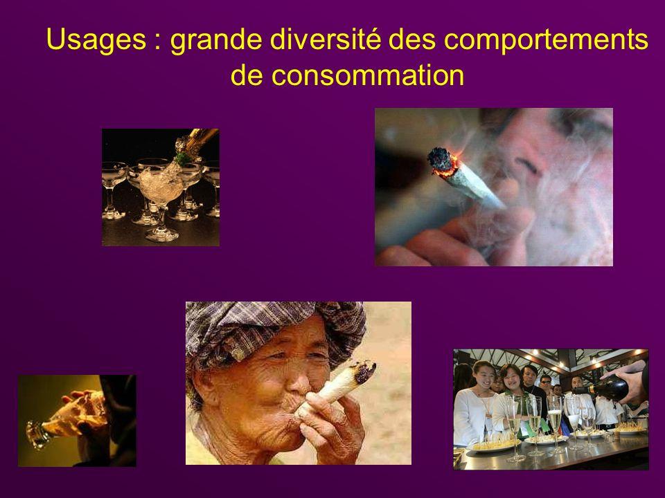 Usages : grande diversité des comportements de consommation