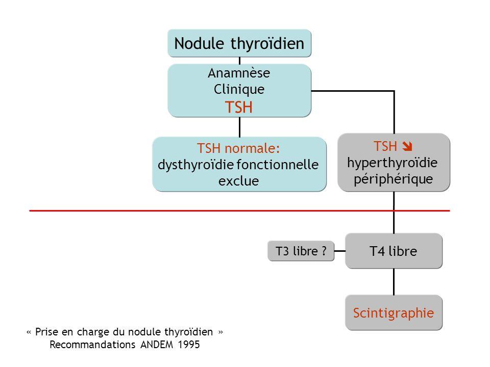 Nodule thyroïdien TSH Anamnèse Clinique TSH  TSH normale: