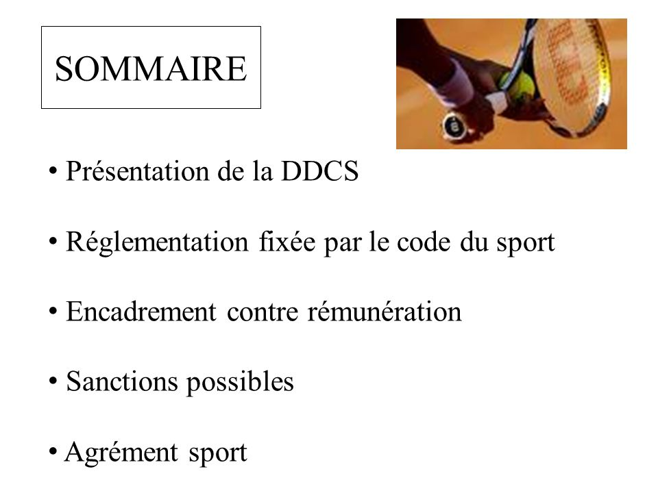 SOMMAIRE Présentation de la DDCS