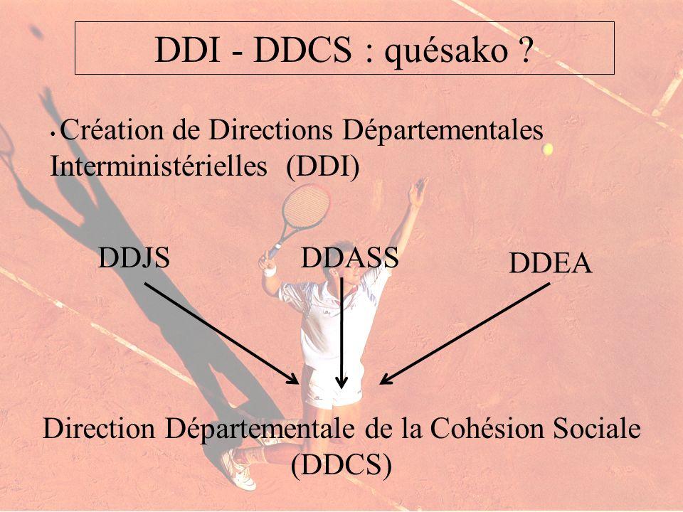 Direction Départementale de la Cohésion Sociale (DDCS)