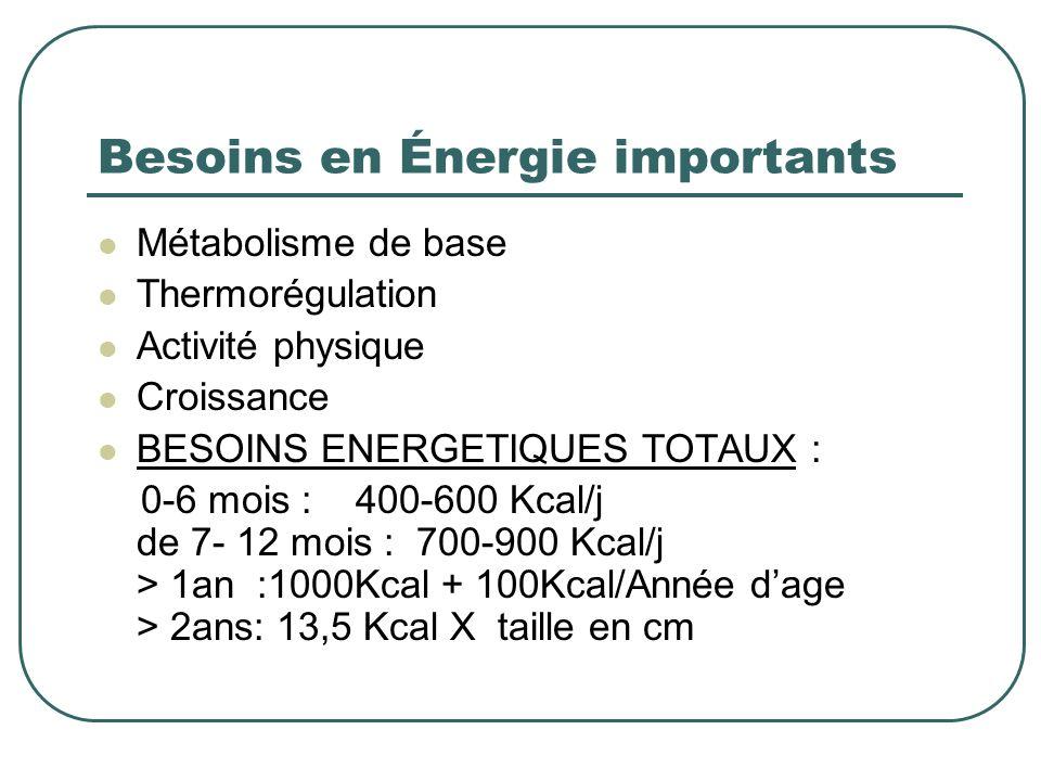Besoins en Énergie importants
