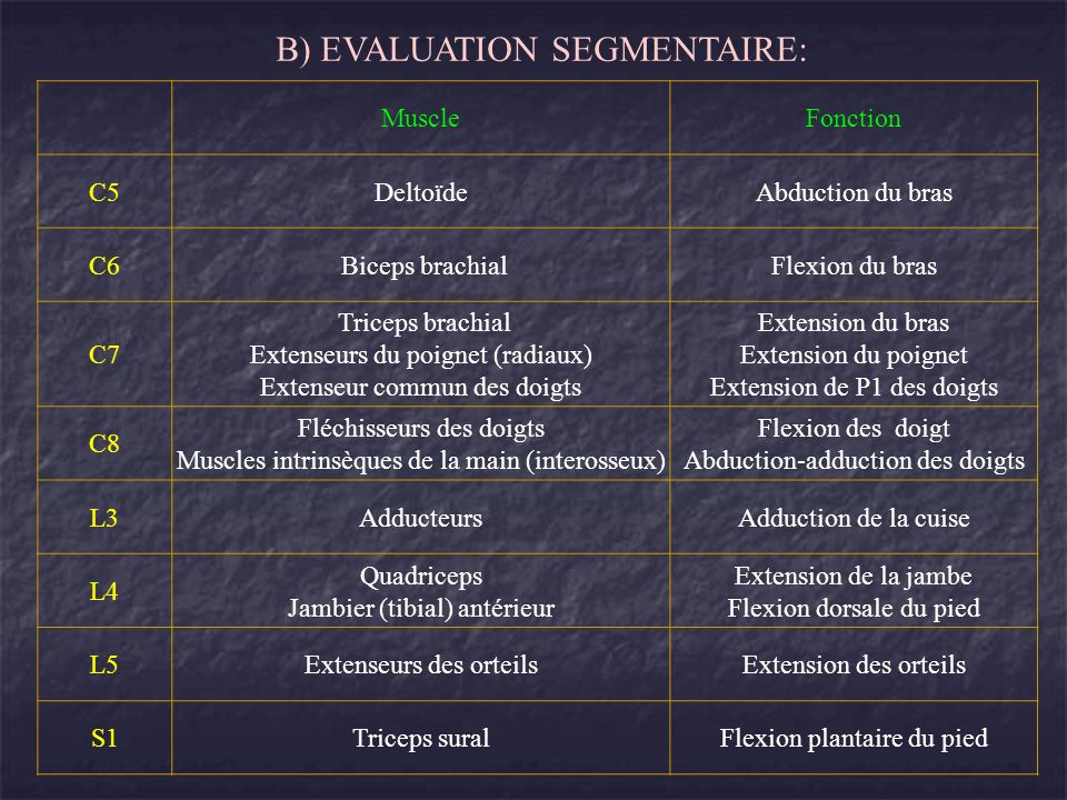 B) EVALUATION SEGMENTAIRE: