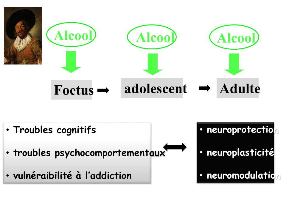 Alcool Alcool Alcool Foetus adolescent Adulte Troubles cognitifs