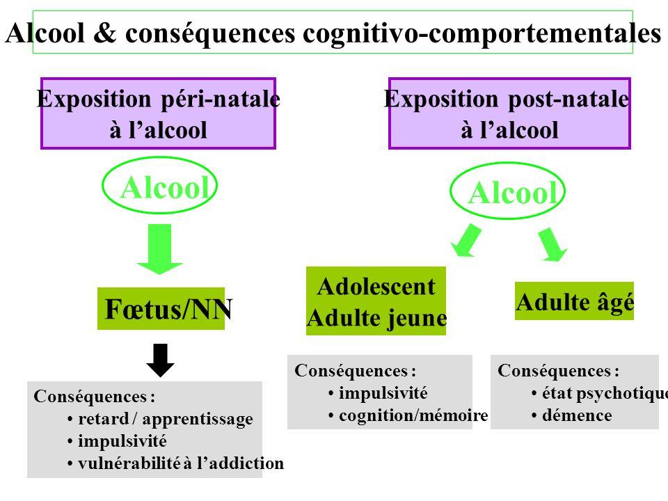 Alcool Alcool Alcool & conséquences cognitivo-comportementales