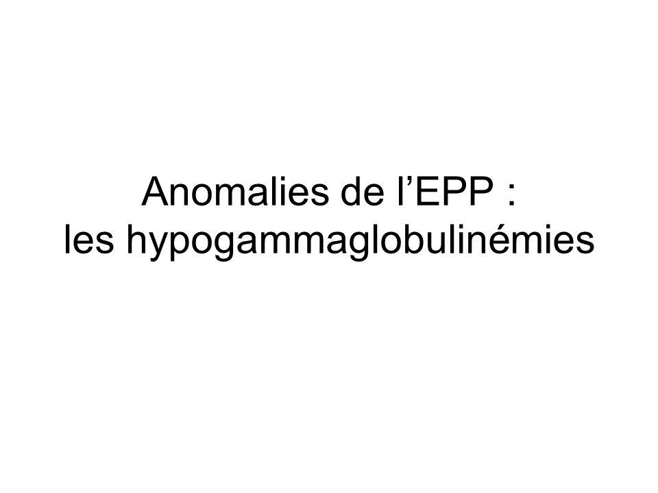 Anomalies de l'EPP : les hypogammaglobulinémies