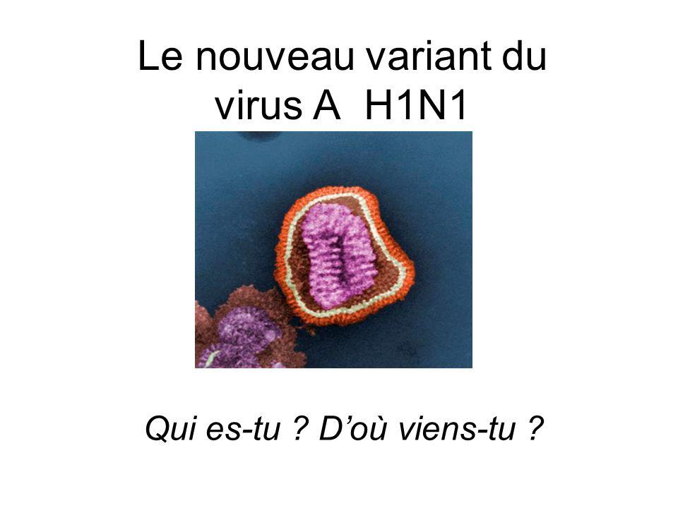 Le nouveau variant du virus A H1N1