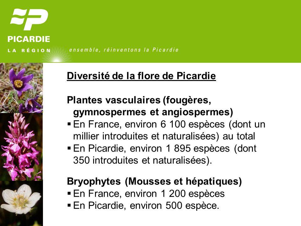 Diversité de la flore de Picardie