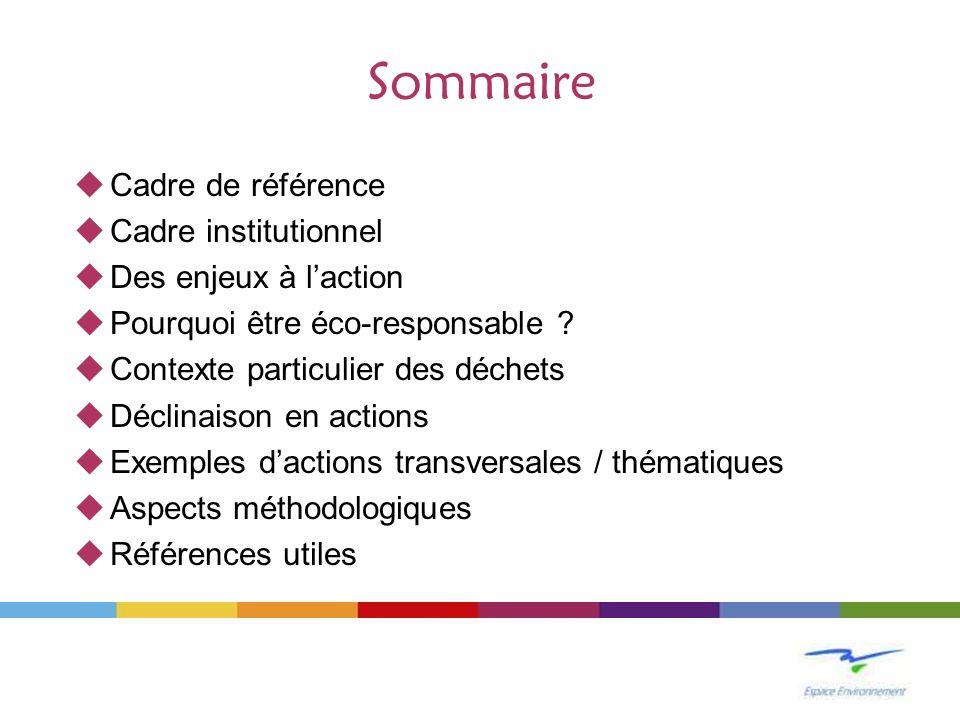 Sommaire Cadre de référence Cadre institutionnel Des enjeux à l'action