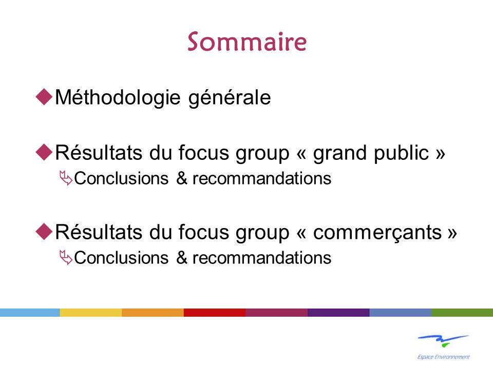 Sommaire Méthodologie générale