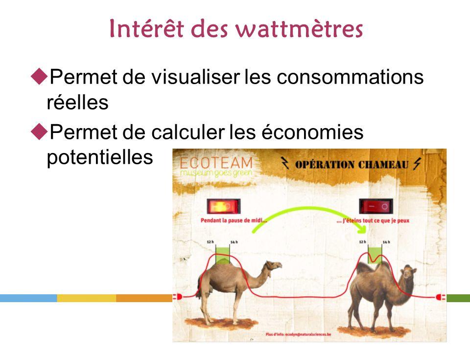 Intérêt des wattmètres