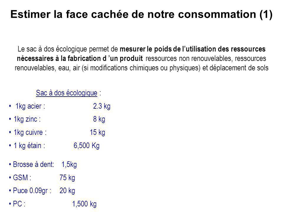 Estimer la face cachée de notre consommation (1)