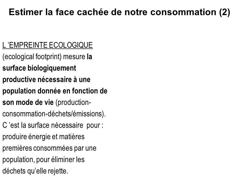 Estimer la face cachée de notre consommation (2)