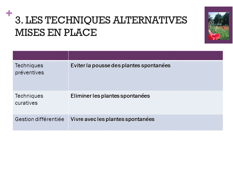 3. LES TECHNIQUES ALTERNATIVES MISES EN PLACE