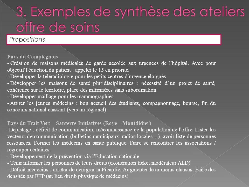3. Exemples de synthèse des ateliers offre de soins