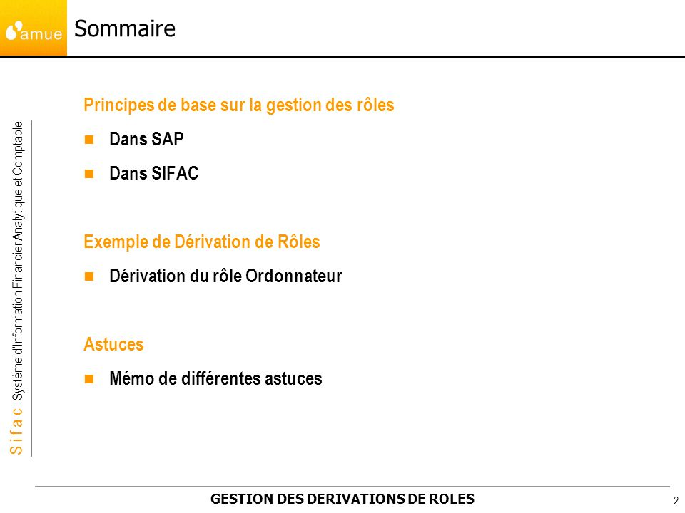 Sommaire Principes de base sur la gestion des rôles Dans SAP