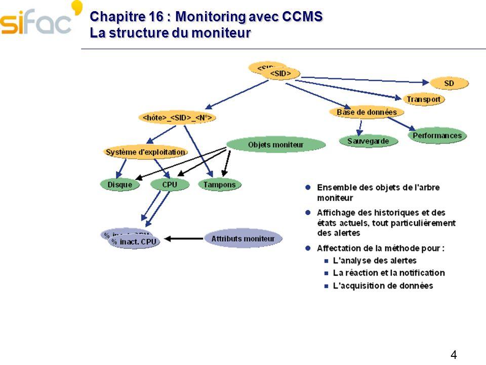 Chapitre 16 : Monitoring avec CCMS La structure du moniteur