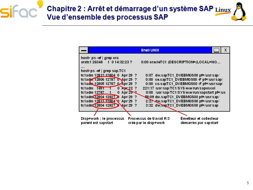 Chapitre 2 : Arrêt et démarrage d'un système SAP Vue d'ensemble des processus SAP