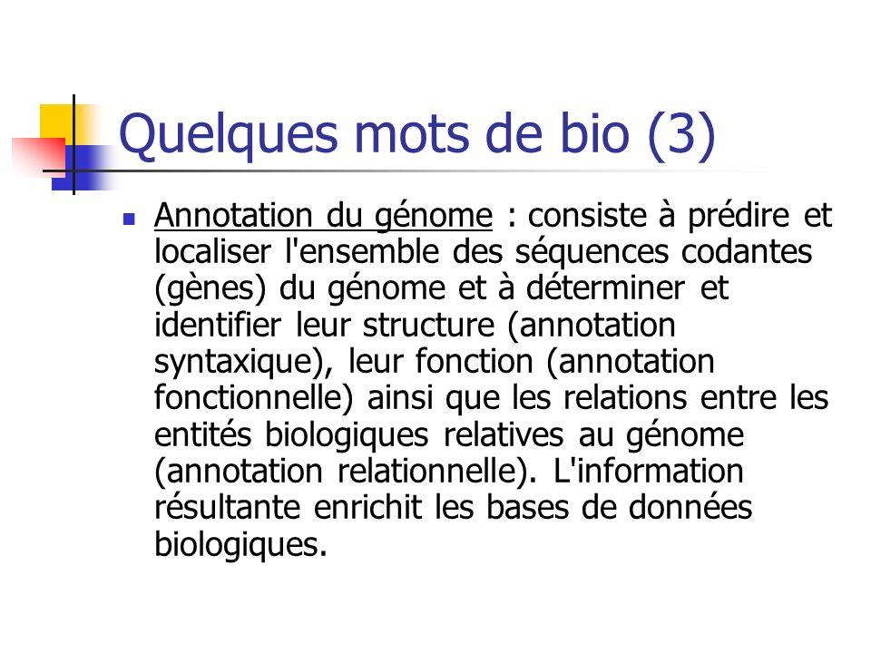 Quelques mots de bio (3)