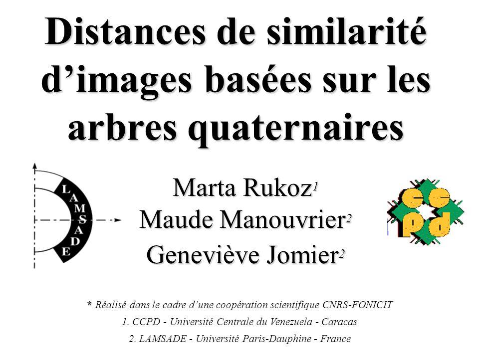 Distances de similarité d'images basées sur les arbres quaternaires