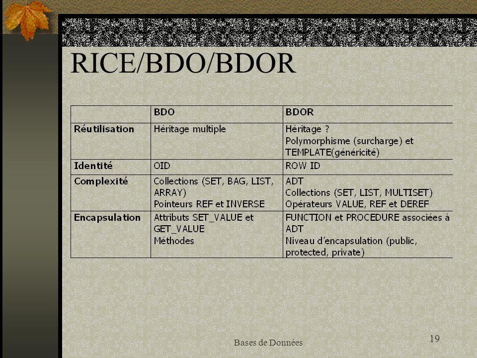 RICE/BDO/BDOR Bases de Données