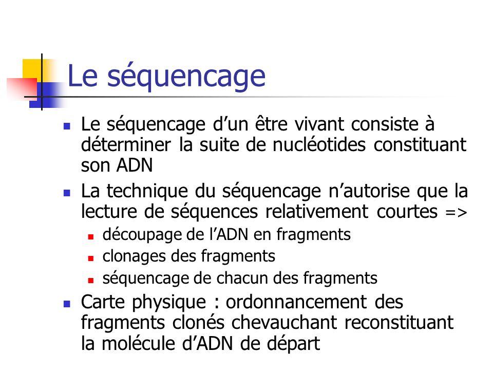 Le séquencage Le séquencage d'un être vivant consiste à déterminer la suite de nucléotides constituant son ADN.