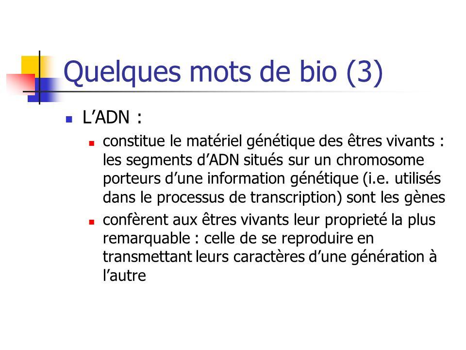 Quelques mots de bio (3) L'ADN :