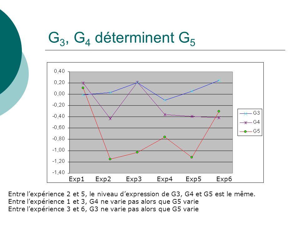 G3, G4 déterminent G5 Exp1 Exp2 Exp3 Exp4 Exp5 Exp6