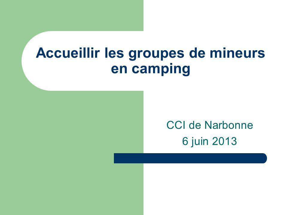 Accueillir les groupes de mineurs en camping