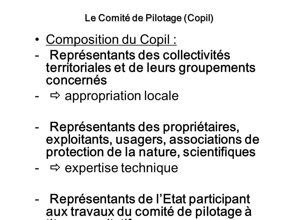 Le Comité de Pilotage (Copil)